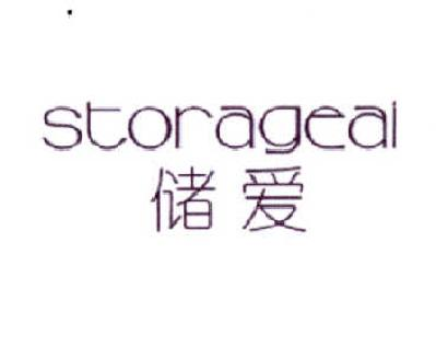 储爱STORAGEAI