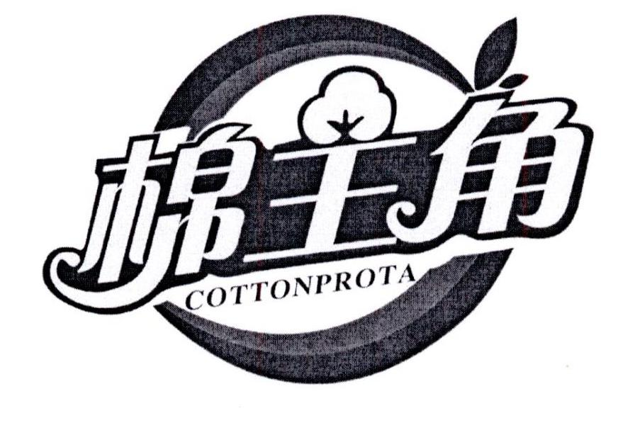 棉主角COTTONPROTA