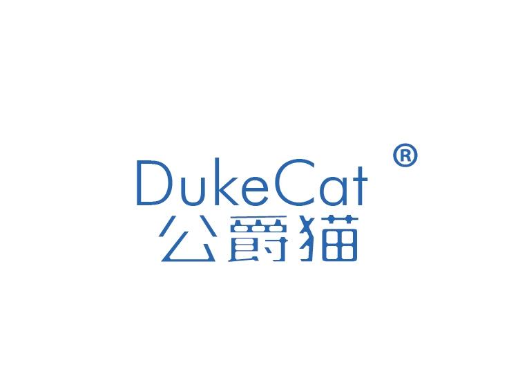 公爵猫DUKECAT