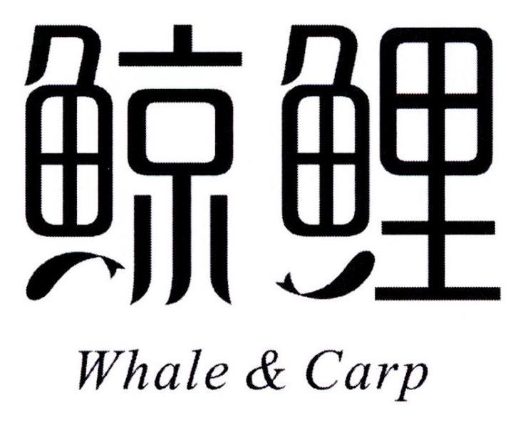鲸鲤WHALE&CARP